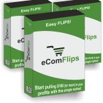 eCom Flips Review By Ivana – Revealed: Proven Method That Flips Brand New Shopify Stores For $150-300 Per Flip